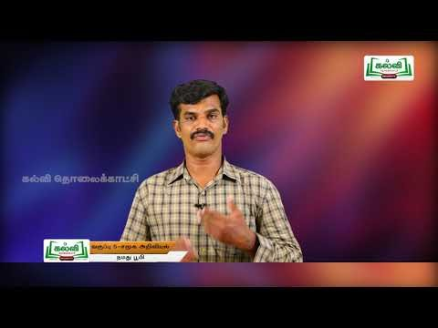 5th Social Science நமது பூமி அலகு 1 பகுதி 2 Kalvi TV