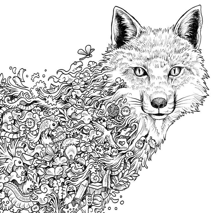 Detailed Animal Coloring Pages Bestofcoloring Com Coloring Pages