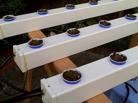 Build Hydroponic PVC System
