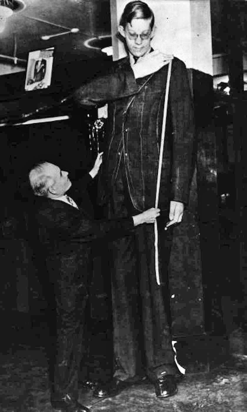 As a young man, Wadlow's custom-made clothes required as much as three times the amount of cloth. Here's Wadlow being measured for a suit jacket for his 8-foot-3 stature.