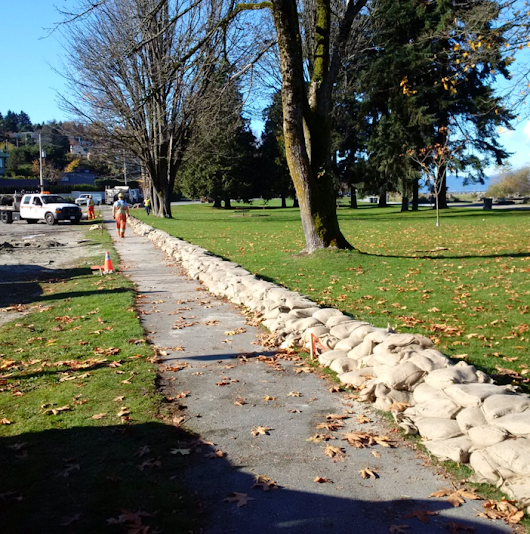 City of Vancouver survey on rising sea levels could do more to raise the alarm