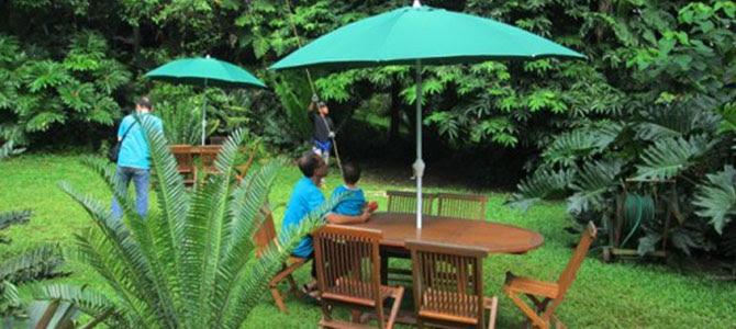 Botanical Cafe Depok