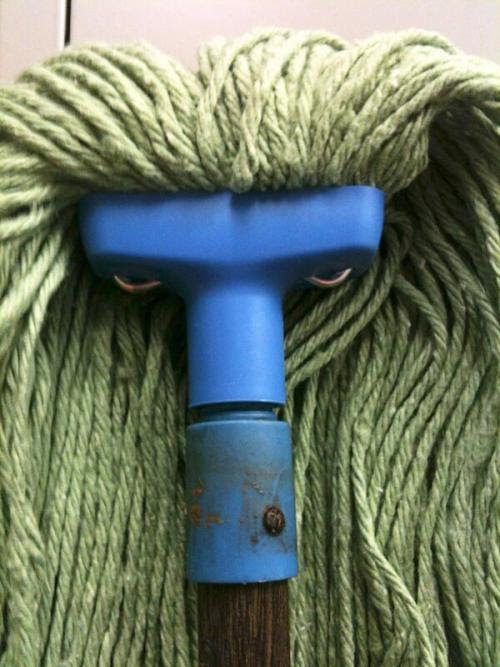 That's one mean looking mop.