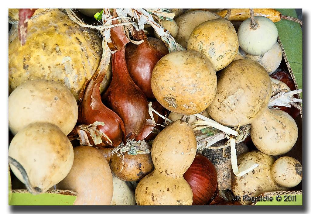 ... cebollas y calabazas ... by JR Regaldie Photo