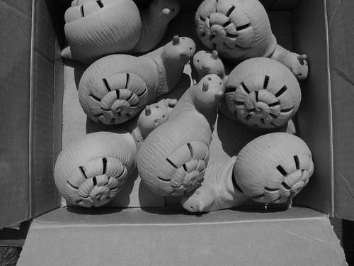 Snailbox