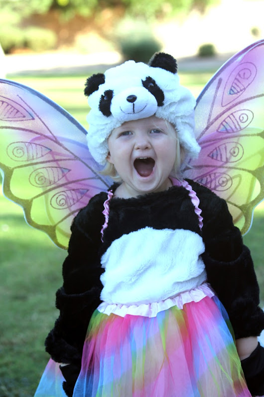 Amazon's Fairy Tale Response to a Toddler's Halloween Wish