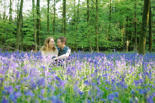 Sussex Bluebell Wood Pre-Wedding Shoot