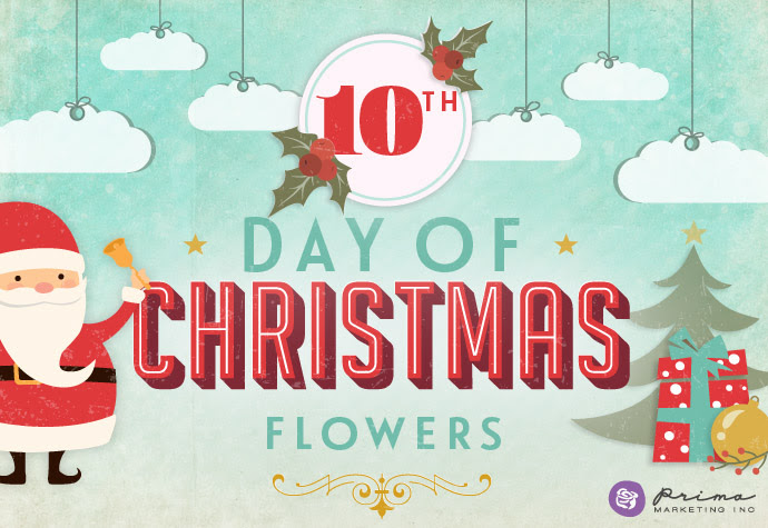 http://prima.typepad.com/prima/2015/12/on-the-10th-day-of-christmas.html
