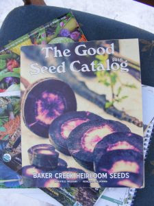 seed catalogs I recommends for heirloom, open pollinated and organic varieties