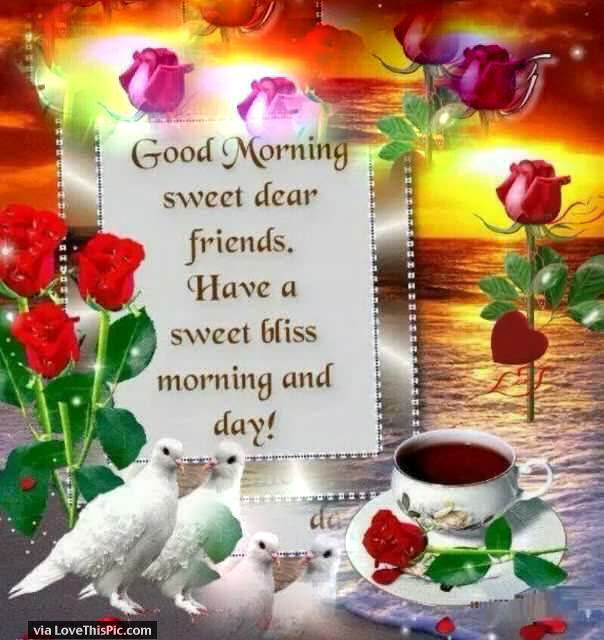 Good Morning Sweet Dear Friends Pictures Photos And Images For