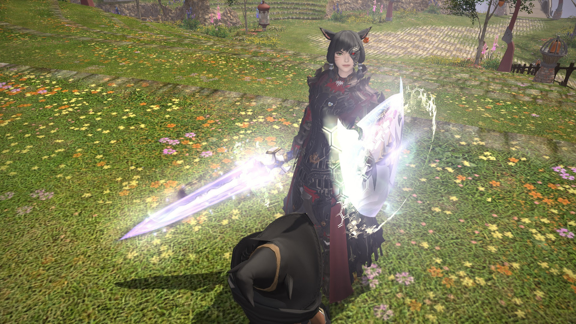 Ultros server first Paladin Nexus, aka blinded by the ...