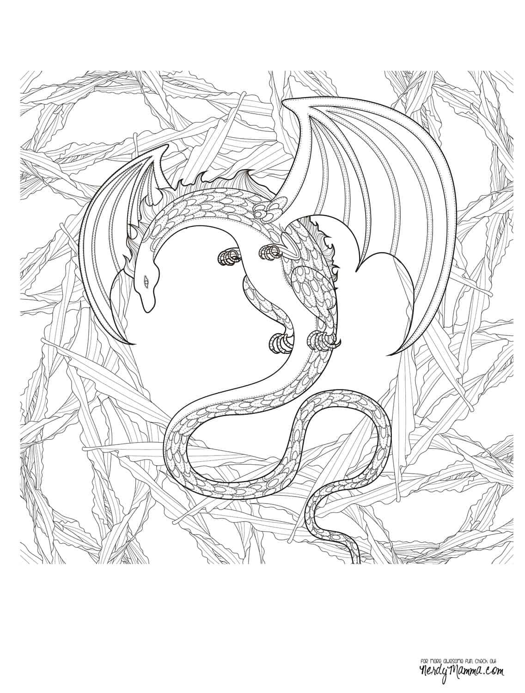Drachenbaby Malvorlage