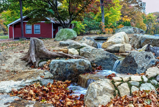 Fall Cleanouts Keep Up with Your Raleigh Pond's Maintenance
