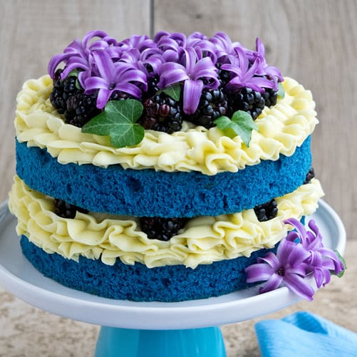 How To Make A Blue Velvet Naked Cake • CakeJournal.com