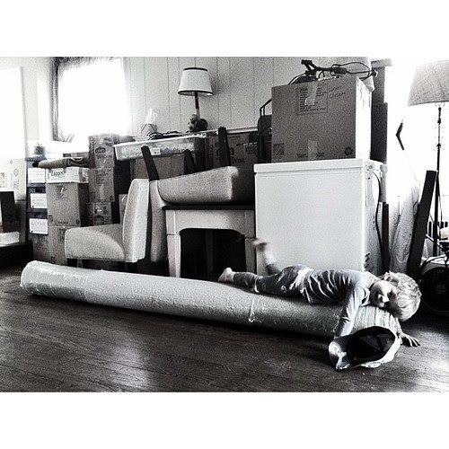 He loves the carpet rolled up...making the best of #moving