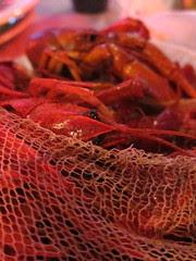 #124 - Crawfish