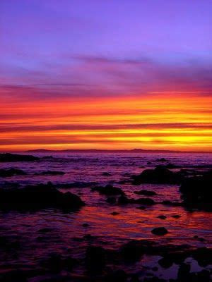 35 best images about Tropical Sunset Theme on Pinterest