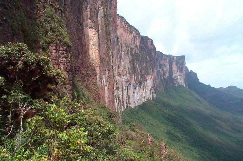Archivo:Roraima-Tepui Wand.jpg