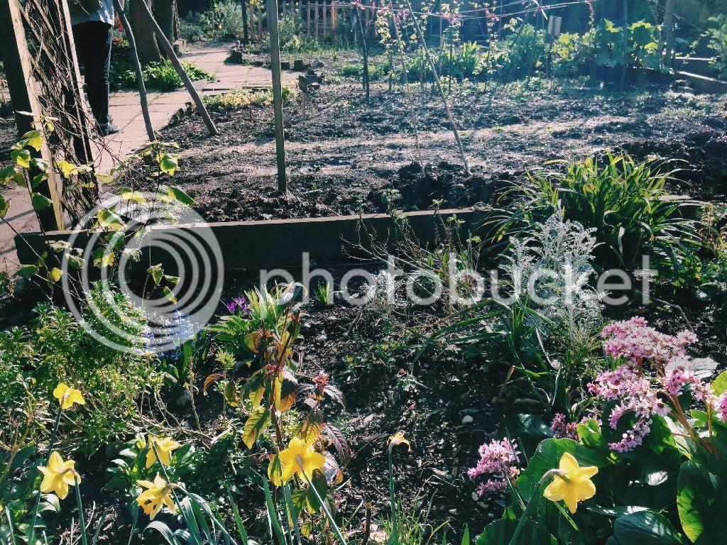 photo 8B2EADDA-833A-4E27-A527-963014E5CDD4.jpg
