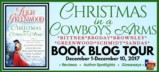 Blog Tour & Review — Christmas in a Cowboy's Arms