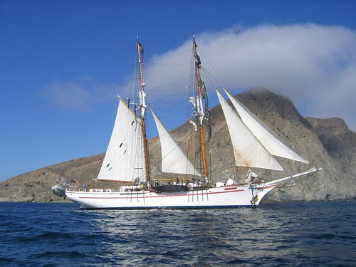 exy johnson raising sails cat bay 2