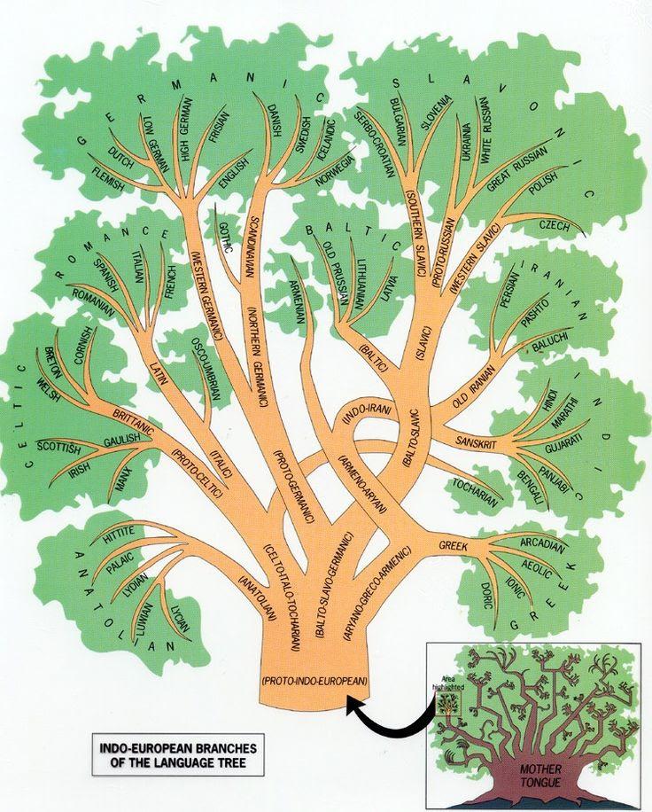 Indo-European Language Family Tree