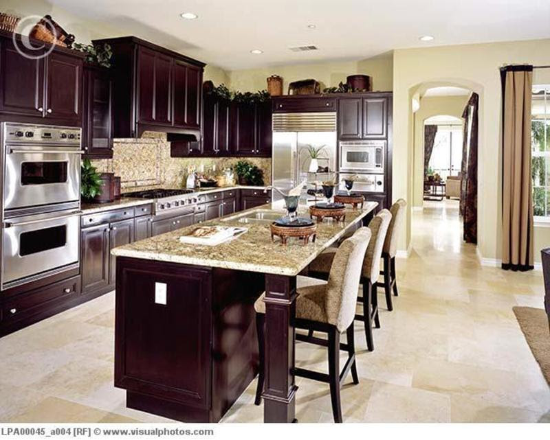 Popular 25 Contemporary Kitchens With Dark Cabinets