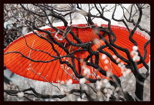 sem título por yonezawa_shinichi