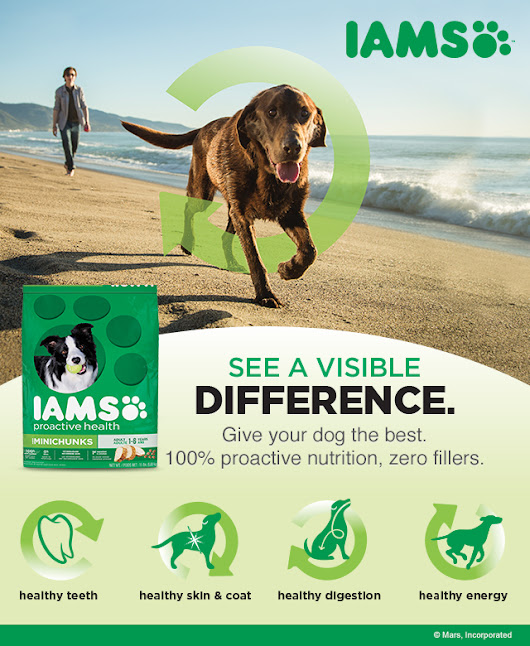 IAMS Visible Difference - Coupon Savings In The South