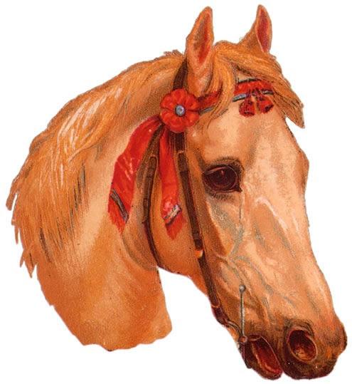 Vintage horse head ephemera