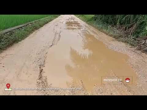 Jalan Desa Gampong Babah Krueng Kecamatan Peureulak Timur Rusak Parah dan Belum Ada Perhatian Pemerintah