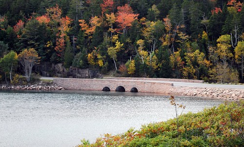 Bridge at Acadia National Park