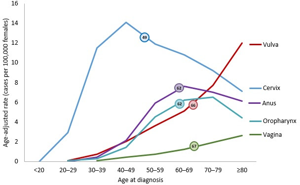 Line chart showing the median age at diagnosis for HPV-associated cancers among women.