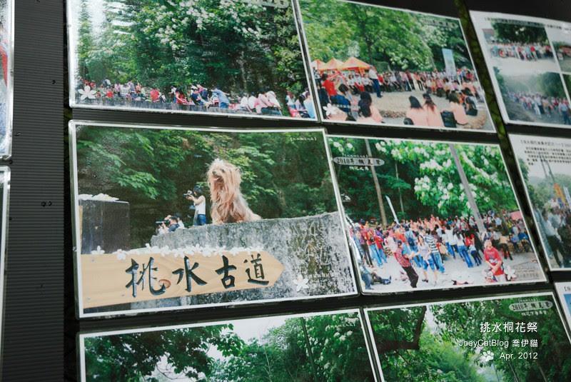 2012挑水桐花祭DSC_4489