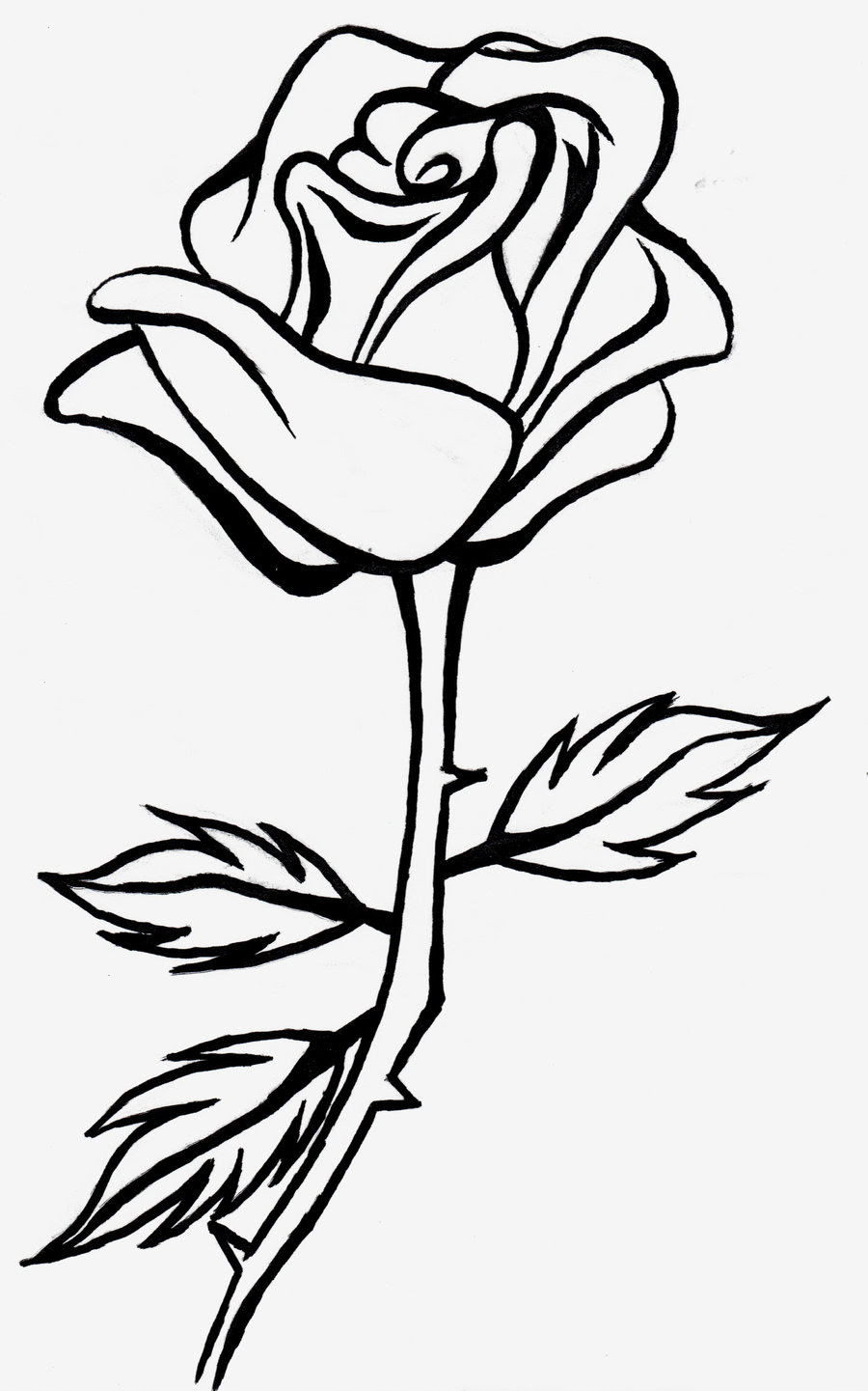 Black And White Rose Drawing At Getdrawingscom Free For Personal