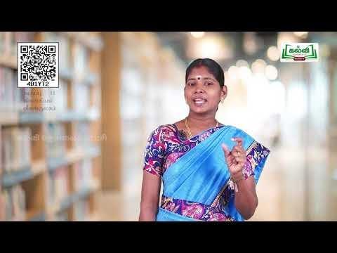11th Zoology விலங்குலகம் அலகு 1 பகுதி 3 பாடம் 2 Kalvi TV