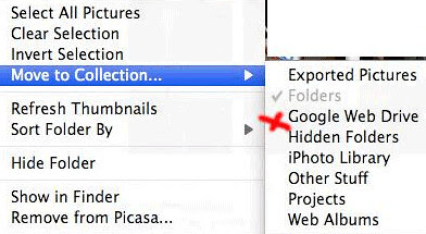picasa webdrive by you.