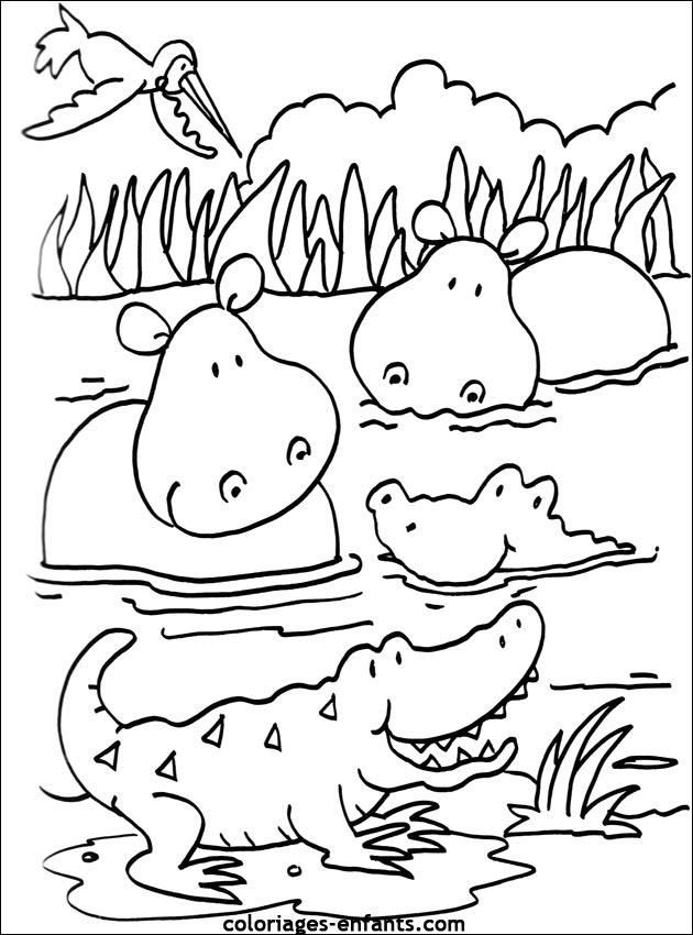 Coloriage Bebe Hippopotame.Coloriage Hippopotame A Imprimer Coloriage