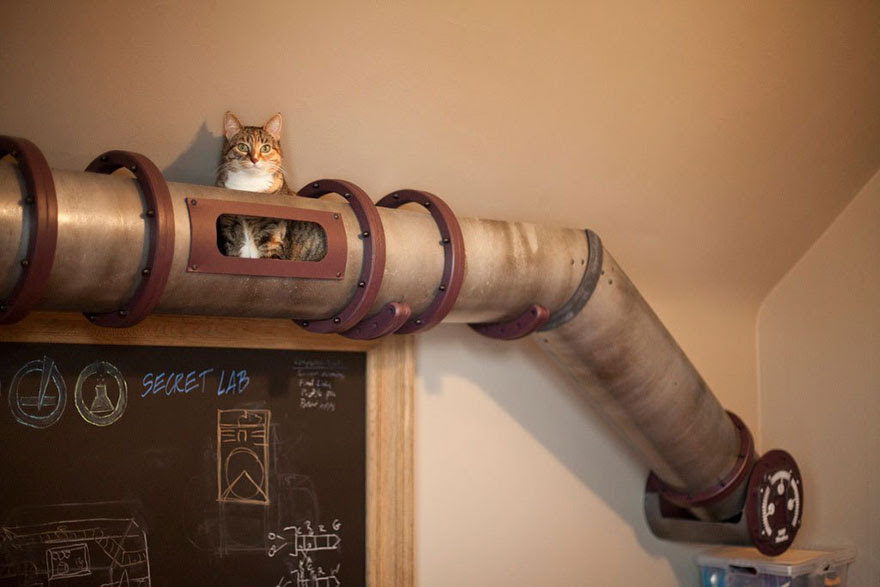 moveis-para-gatos-14