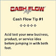 Cash Flow Management Tip - Acid Test Your Business Idea - CashFlowMojoSoftware.com