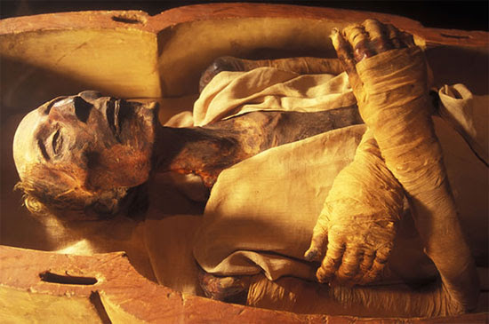 The mummy of Ramesses II