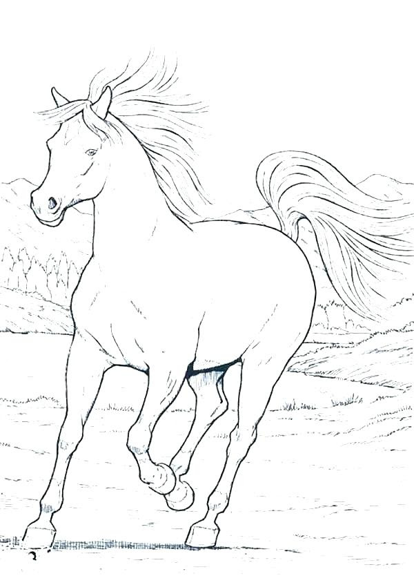 Horse Head Coloring Pages at GetColorings.com | Free ...