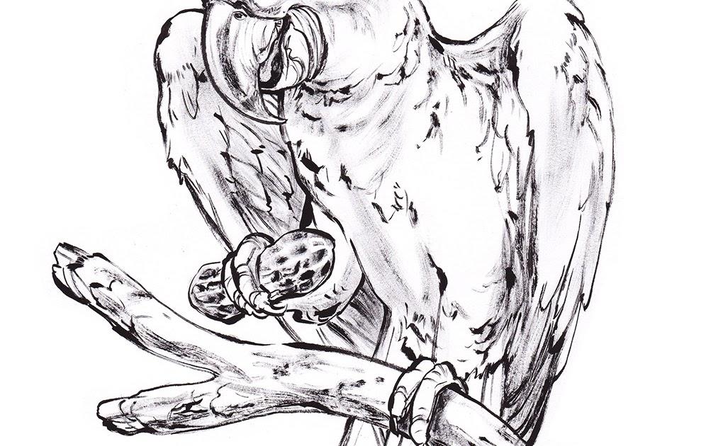 12 EASY COLORING BOOK SAFARI ANIMALS PRINTABLE PDF