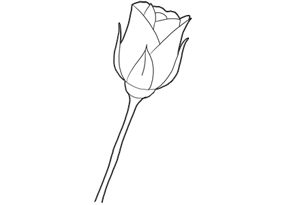 how to draw roses with easy step by step valentine s day drawing tutorials lessons for kids and children