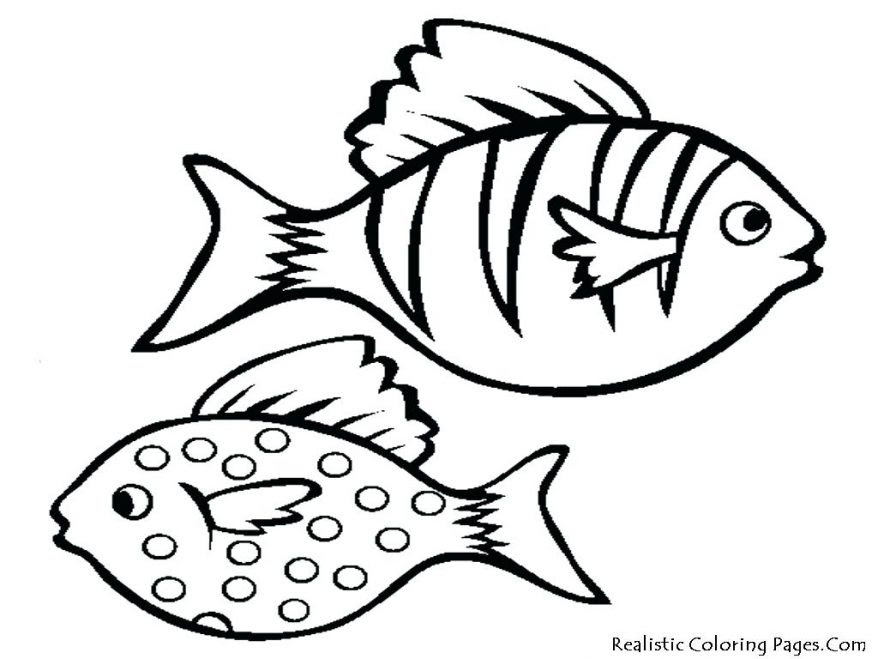 Tropical Fish Coloring Pages   Free download on ClipArtMag