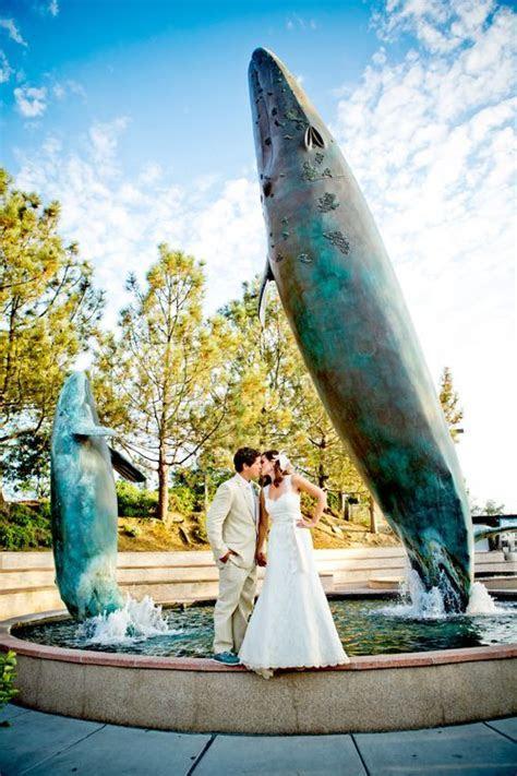 82 best Birch Aquarium at Scripps images on Pinterest