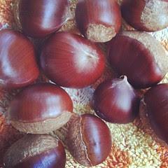 kuri (chestnuts) #autumn #japan @ hattoriryokuchi park #osaka