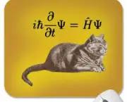 einstein-e-gato-de-schrodinger-6