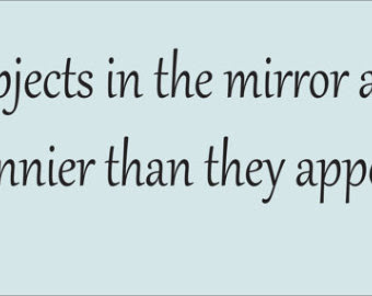 Quotes About Mirror Man 72 Quotes