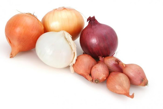 Onion compound suppresses ovarian cancer cell proliferation - Medical News Today